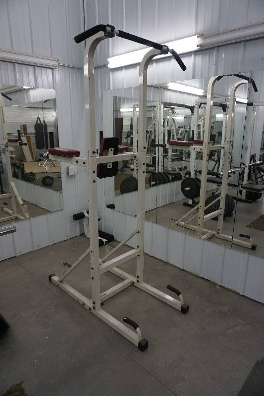 Golds Gym Millenium Series Free Standing Power Tower 2500
