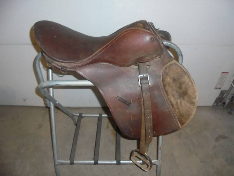 Horse Saddles & Tack, Cowboy Boots, Western Decor & Other Pet
