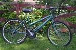 Green Pacific Quasar Mountain Bike