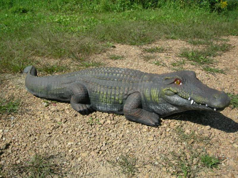 Large 56 resin alligator country cabin cowboy indoor for Alligator lawn decoration