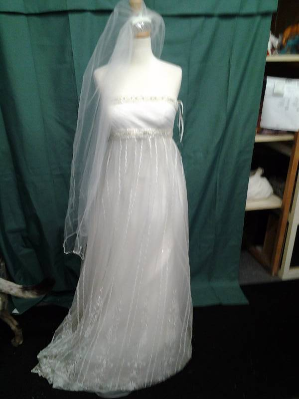 Pronovias With Veil Zipper Needs Repair Size 10
