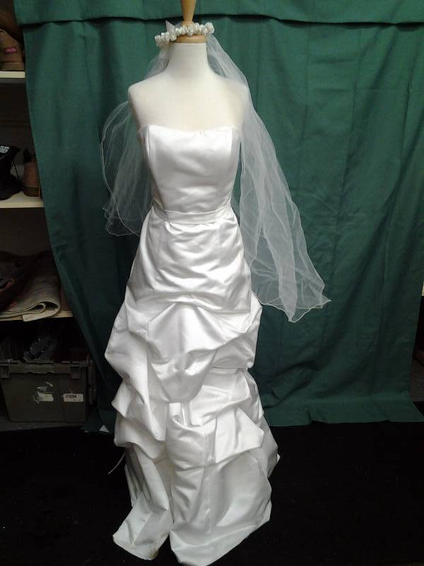 Ivory Dress With Veil Size 10