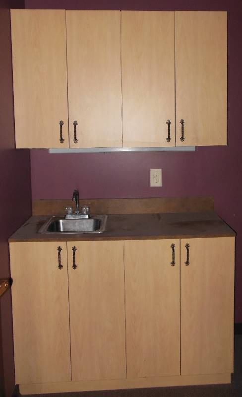Belvedere Cabinets With Quick Disconnect Hardware And Sink One Week Auction Salon And