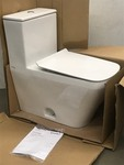 Unused DuraVit Toilet