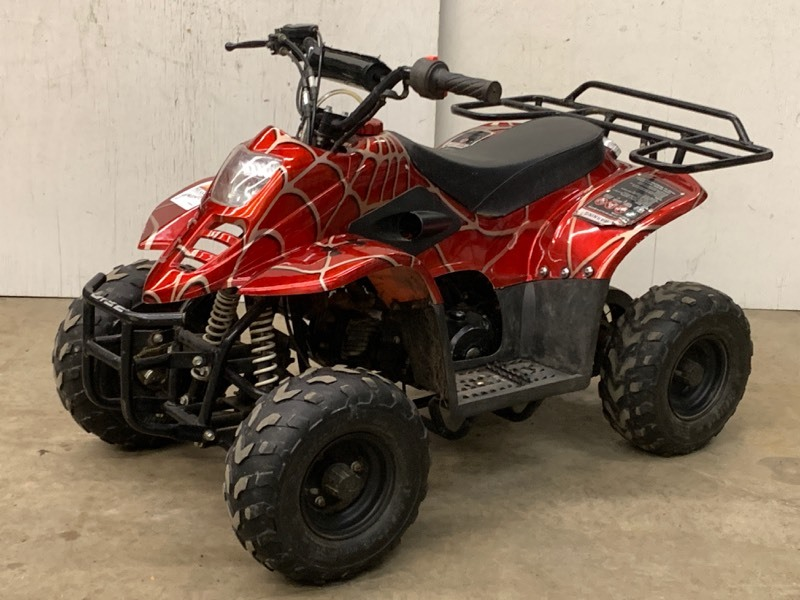 2007 coolster 110cc atv february consignment auction. Black Bedroom Furniture Sets. Home Design Ideas