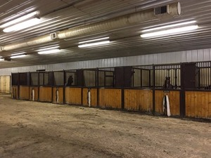 10'x12' Horse Stall Panel Lot
