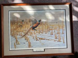 1994 Pheasant Forever Print of the Year