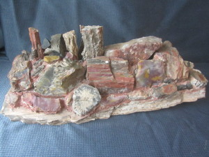 Petrified Wood Sculpture